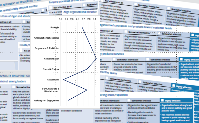 High-performing-organizations-assessment